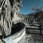 Soda Springs / Zzyzx, California