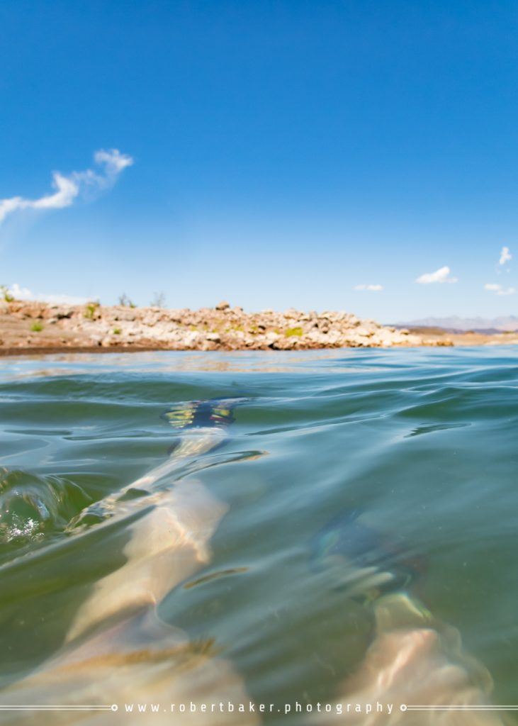 Lake Mead 6x6 Adventures