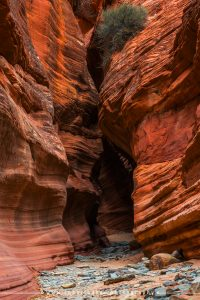 Slot canyons outside Kanab, Utah.