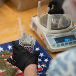 weighing cannabis