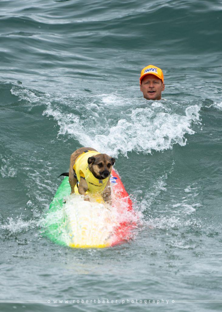 McKenna Surf City Surf City Surf Dog Event