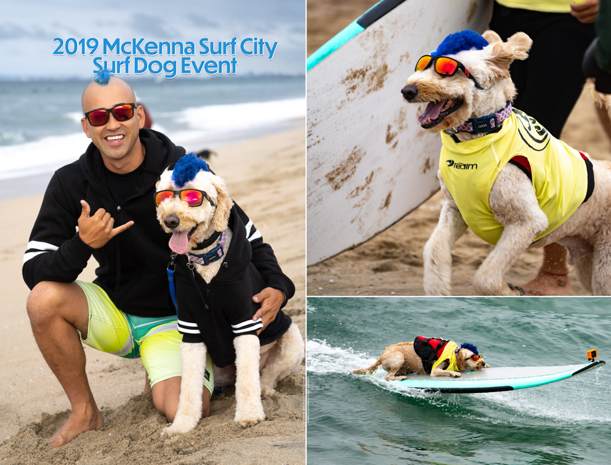 Kentucky and Derby the Surf Dog
