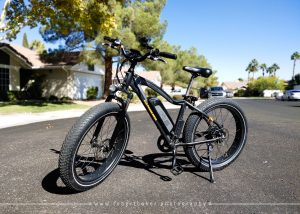 RADRover Electric Bicycle